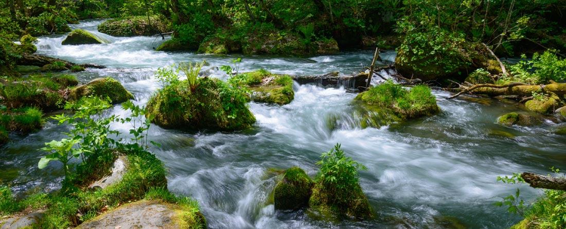 安心・安全な水を未来へ